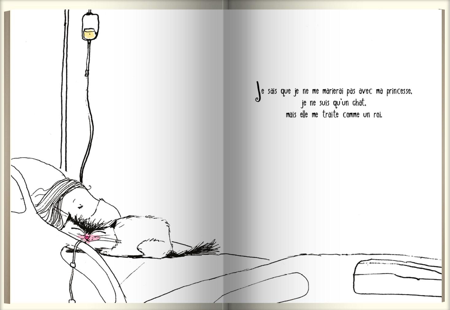 Page intérieure du livre Une vie de chat